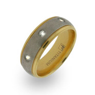 Gold and CZ Titanium Wedding Band